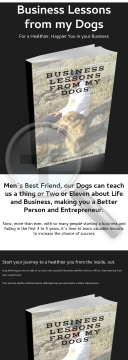 business-lessons-from-my-dogs.png