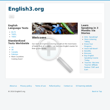 learn-grammar-and-writing-in-30-days-by-taking-3000-small-steps.png
