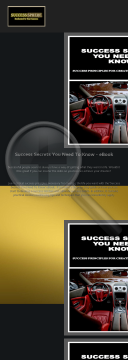 success-secrets-you-need-to-know-ebook.png