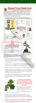 the-bonsai-tree-care-system.png